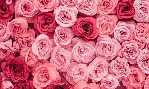 Ce stii despre aranjamentele florale?